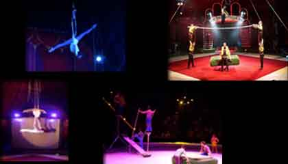 3850 Circus Group