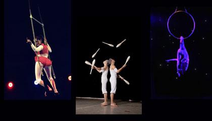 4135 Circus Trio
