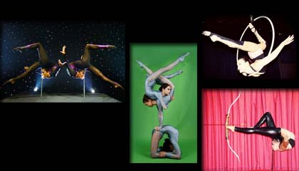 4397 Contortion Group
