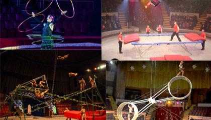 5856 Circus Group