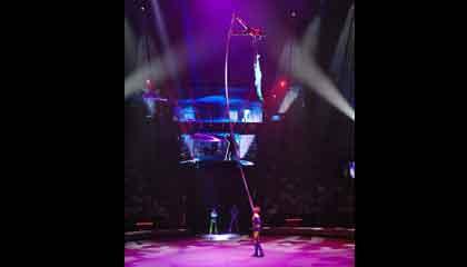 5880 Circus group
